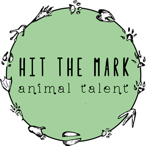 Hit the Mark Animal Talent